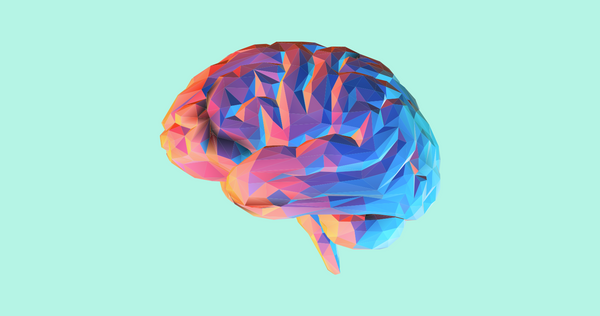 The Marketer's Guide to the Brain